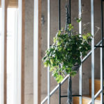 LDKと書斎は木製スリットの間仕切りですが、階段部分はあえてアイアン素材にし、ハンギングでグリーンなどが楽しめる。